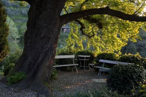 Arte e arti articolo i miei giardini - Il sole nel giardino ...